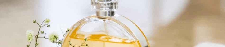 Perfumes e cosméticos  das melhoras marcas online até 5 meses sem juros - SALTI